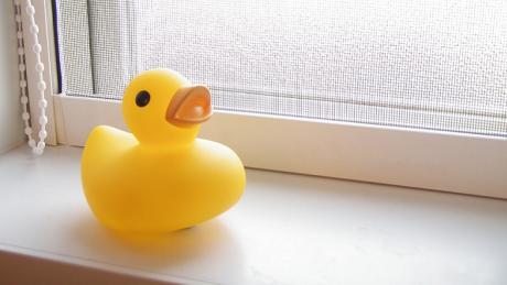 実は雑菌だらけ!お風呂のおもちゃはどう洗う?